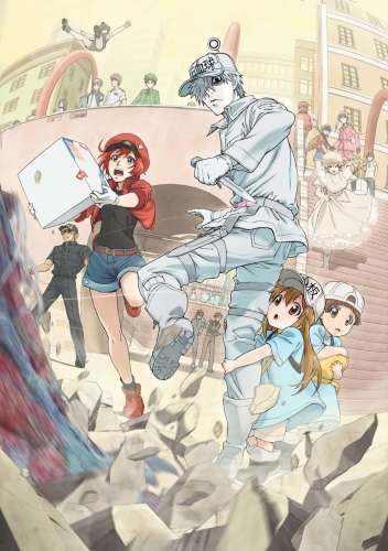 Download Hataraku Saibou (main) Anime
