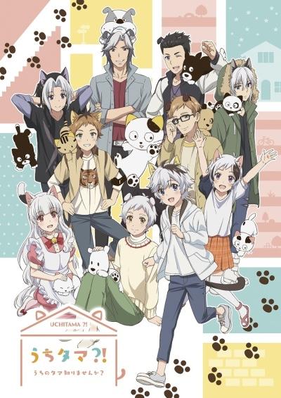 Download Uchi Tama?! Uchi no Tama Shirimasenka? (main) Anime