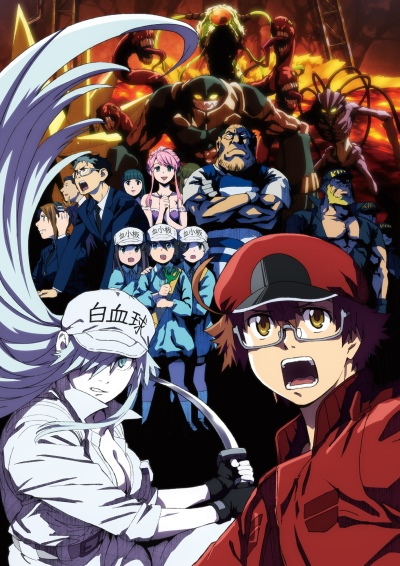 Download Hataraku Saibou Black (main) Anime